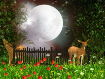 Moonlight. Two deer in the fairy forest Royalty Free Stock Photo