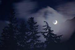Moonlight Stock Photos
