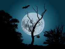 Moonlight background. Moonlight forest background with silhouette of bat stock illustration