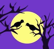 Moonlight Birds. Two black birds sitting in the moonlight stock illustration