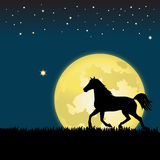 Moonlight Horse. A horse silhouetted in moonlight runs across the grass. Copy space provided. Available in eps or ai on request Royalty Free Stock Image