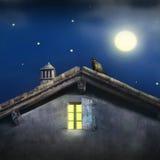 Moonlight Royalty Free Stock Photos