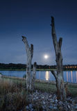 Moonlight lakeside Stock Photography