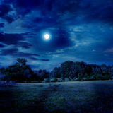 Moonlight landscape. Under cloudy skies royalty free stock photos