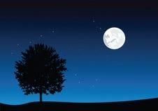Moonlight landscape. Vector illustration eps 8 Royalty Free Stock Photography
