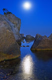 Moonlight night Royalty Free Stock Photo