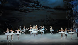 Moonlight night-The last scene of Swan Lake-ballet Swan Lake Stock Images