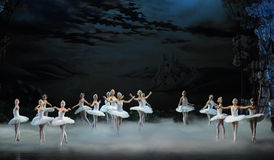 Moonlight night-The last scene of Swan Lake-ballet Swan Lake Stock Image