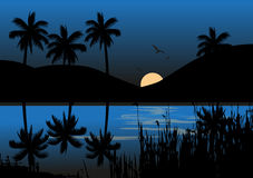 Moonlight Over A Lake With Mountain. Vector illustration of the moonlight over a lake with coconut palm trees and birds Stock Images