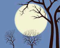 Moonlight over trees. Contour,illustration royalty free illustration