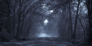Moonlight road. Rural road bathed in moonlight, can represent a journey or opportunity royalty free stock photo