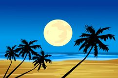 Moonlight sea beach Royalty Free Stock Image