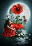 Moonlight Sonata. The little girl sits on the flower poppy and listens to music young violinist under moonlight, Moonlight Sonata Stock Photos