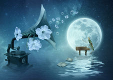 Moonlight Sonata Royalty Free Stock Photo
