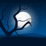 Moonlight and Tree Stock Image