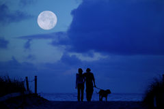 Moonlight Walk. Loving couple walking there dog on the beach in the moonlight Stock Image