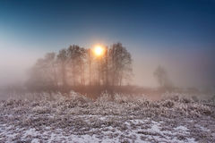 Moonlight in the winter night. Fog and mist on snowy winter rive Stock Image