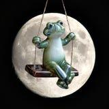 Moonlit żaba na huśtawce Zdjęcia Royalty Free