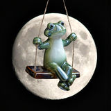 Moonlit frog on swing Royalty Free Stock Photos