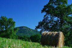 Moonlit krajobraz Zdjęcie Royalty Free