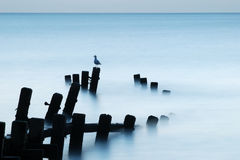 Moonlit Meer, Norfolk Lizenzfreie Stockbilder