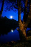 Moonlit night in autumn park Stock Image