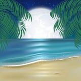 Moonlit night on the beach Stock Image