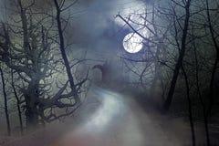 Moonlit night Royalty Free Stock Photos