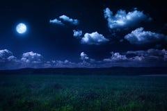 Moonlit night on nature. Beautiful summer landscape, moonlit night on nature royalty free stock photography