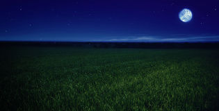 Moonlit night Royalty Free Stock Image
