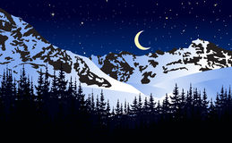 Moonlit night in winter mountains.  Royalty Free Stock Image