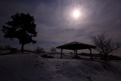 Moonlit night of winter scenery Royalty Free Stock Images