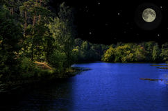 Moonlit night in the woods Royalty Free Stock Image