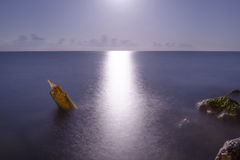 Moonlit path Stock Images