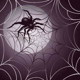 Moonlit Spider and Web. Big hairy spider and web illustration.  AI 10 .eps contains radial gradients and transparency Royalty Free Stock Images