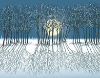 Moonlit winter night Stock Image