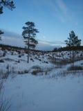 Moonrise über dem Barrens Lizenzfreie Stockfotos