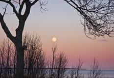 Moonrise imagens de stock