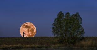 moonrise Royaltyfria Foton