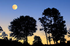 Moonrise da cume Foto de Stock Royalty Free