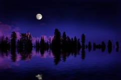 Moonrise della foresta Immagine Stock