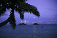Moonrise in Hawaii Royalty Free Stock Image