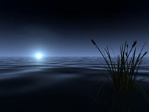 Moonrise at the Lake. A spooky-looking moon rises above the gently rippled surface of a lake, illuminating a band of fog at the horizon. A silhouetted patch of Stock Image