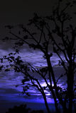 Moonrise mostrado em silhueta em india himachal foto de stock royalty free