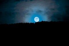 Moonrise ovanför träden, Camarda, Abruzzo, Italien Arkivfoton