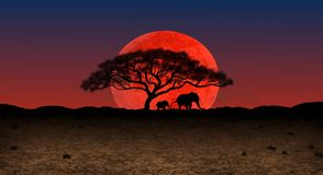 Moonrise over de Afrikaanse wildernis royalty-vrije illustratie