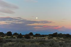 Moonrise over Kalahari desert stock photo