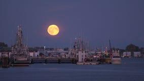 Moonrise van de Stevestonhaven 4k UHD stock video