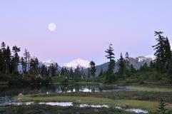 Moonrise van de Weiden van de heide stock foto