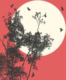 Moonset ilustração royalty free